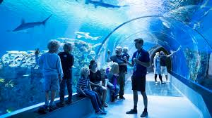Aquarium-Denmark